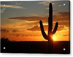 Saguaro Sunset Acrylic Print