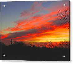 Saguaro Winter Sunrise Acrylic Print