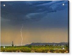 Saguaro With Lightning Acrylic Print