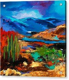 Saguaros Land Acrylic Print by Elise Palmigiani