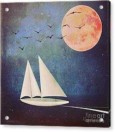 Sail Away Acrylic Print by Alexis Rotella