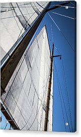 Sail Away Acrylic Print by Karol Livote