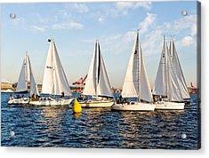 Sail Race Acrylic Print by Tom Dowd