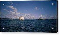 Sailboat In The Sea, St. Maarten Acrylic Print