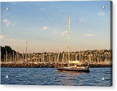 Sailboat Marina Acrylic Print by Tom Dowd