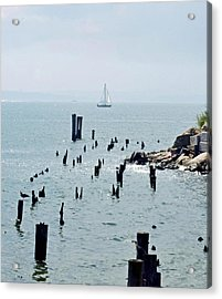 Sailboat Off City Island, New York No. 1 Acrylic Print by Sandy Taylor