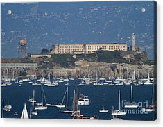 Sailboats In The San Francisco Bay Overlooking Alcatraz . 7d8080 Acrylic Print