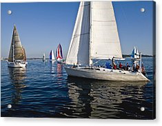 Sailboats Acrylic Print by Tom Dowd