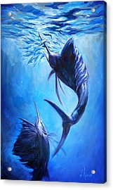Sailfish And Ballyhoo Acrylic Print by Tom Dauria