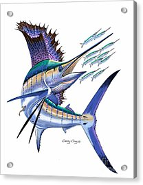 Sailfish Digital Acrylic Print by Carey Chen