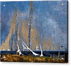 Sailing Acrylic Print by Arne Hansen