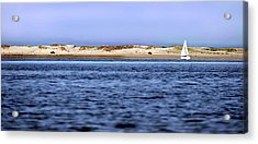 Sailing Blue Acrylic Print by Joanne Brown