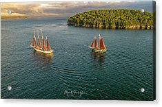 Sailing Frenchman Bay Acrylic Print