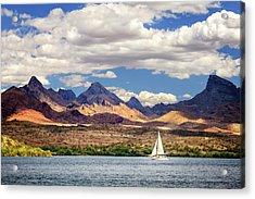 Sailing In Havasu Acrylic Print by James Eddy