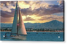 Sailing In San Diego Acrylic Print