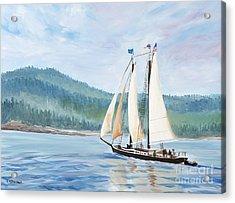 Sailing Into Castine Harbor Acrylic Print by Stella Sherman