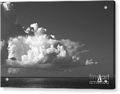 Sailing Into Storm Acrylic Print by Charline Xia