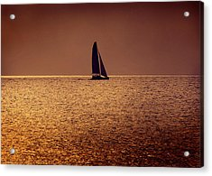 Sailing Acrylic Print by Steven Sparks