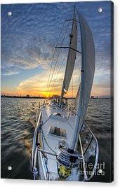Sailing Sunset Sailboat Fate Charleston  Acrylic Print