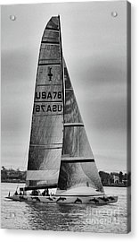 Sailing With Dolphins Acrylic Print