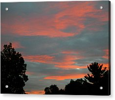 Acrylic Print featuring the photograph Sailor's Delight by Randy Rosenberger