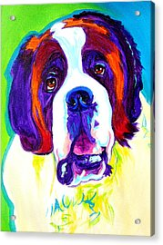 Saint Bernard -  Acrylic Print by Alicia VanNoy Call