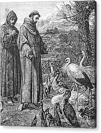 Saint Francis Of Assisi Preaching To The Birds Acrylic Print by English School
