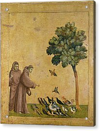 Saint Francis Of Assisi Preaching To The Birds Acrylic Print