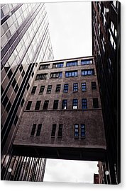 Saint Louis Missouri Architecture Buildings Acrylic Print by Dylan Murphy