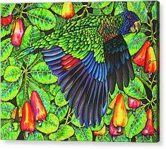 Saint Lucia Amazona Versicolor Parrot Acrylic Print