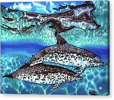 Saint Lucia Wild Dolphins Acrylic Print