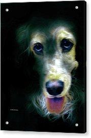 Saint Shaggy Art 14 Acrylic Print