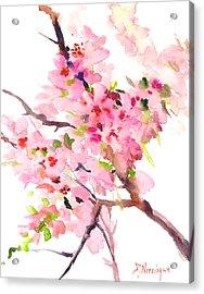 Sakura Cherry Blossom Acrylic Print