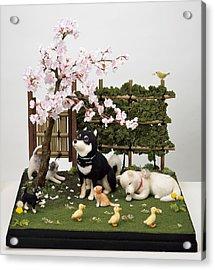 Sakura Acrylic Print by Yukiko Sato