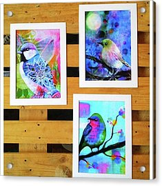 *sale* 3 11 X 14 In. Bird Prints With Acrylic Print