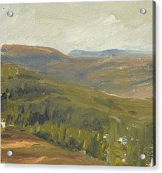 Salen Daylight 90x85 Cm Acrylic Print