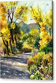 Salida Country Road Acrylic Print
