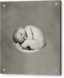 Sally Pearl Acrylic Print by Anne Geddes