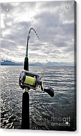 Salmon Fishing Rod Acrylic Print by Darcy Michaelchuk