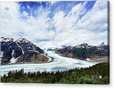 Salmon Glacier Acrylic Print by Heidi Brand