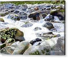 Salmon River Falls And Rocks Acrylic Print by Sharon Freeman