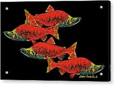 Salmon Season Acrylic Print by Debbie Chamberlin