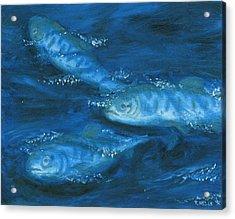 Salmon Swimming Acrylic Print by Tanna Lee M Wells