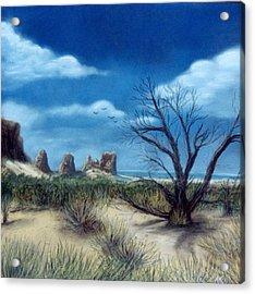 Salt Cedar At Arches Acrylic Print