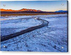 Salt Creek Death Valley Acrylic Print by Peter Tellone