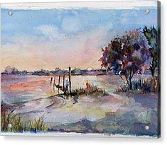 Salt Lake Acrylic Print by Dorothy Herron