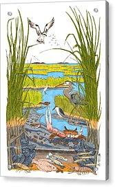Salt Marsh Acrylic Print by John Meszaros