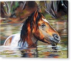 Salt River Tango Acrylic Print by Karen Kennedy Chatham