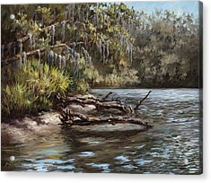 Salt Springs Run Acrylic Print