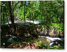 Acrylic Print featuring the photograph Saluda River Columbia Sc by Lisa Wooten